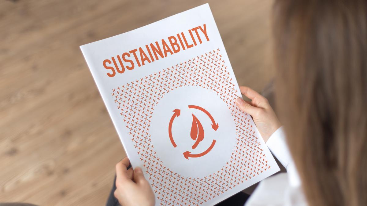 La ZEc y la economía sostenible